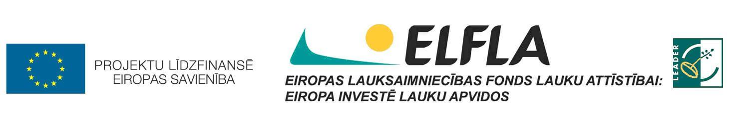 Nevalstiskās organizācijas saņems pašvaldības atbalstu divu projektu īstenošanai