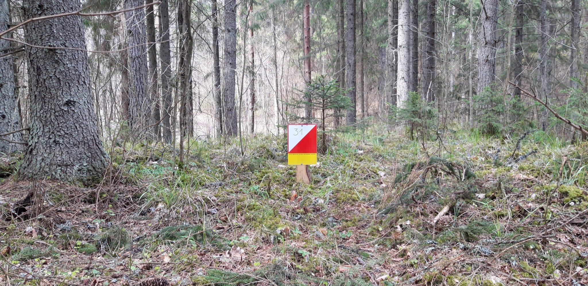 Uz veselību caur mežu!Orientēšanās Spiciera ezera poligonā
