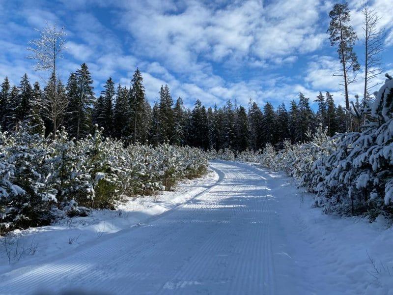 Atklāta aktīvā slēpošanas sezona Smiltenes trasē, pie Tepera ezera mežā (papildināta ar shēmu)!