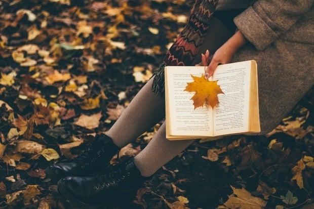 Raunas bibliotēka aicina uz Dzejas dienu pasākumu