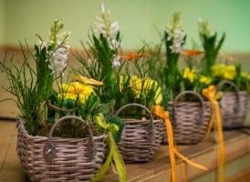 Deja atnes pavasari. Foto - A. Melderis (22.02.20.)