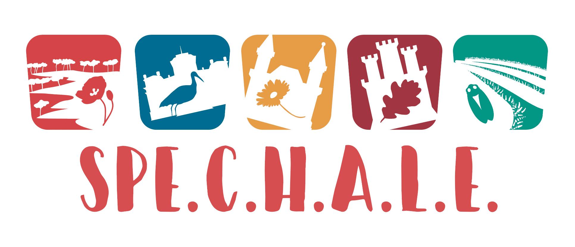 SPECHALE pieaugušo mācībām par kultūras mantojumu un pievilcīgu dzīves vidi pieteikušies 145 interesenti